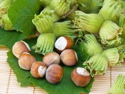 Arbusti fructiferi Alun, soiul Productive mari