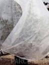 Materiale protectie plante