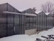 Constructii sere din sticla sau policarbonat pe structura metalica