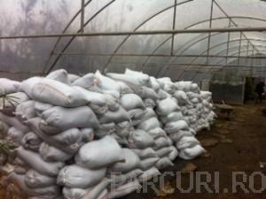 poza Pamant vegetal fertil de padure in saci de 30 litri. pentru plante si gazon (pretul nu include transportul la locatia clientului)