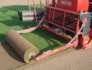 Foto Gazon role mari Mediteranean Turf Big Rolls (18mp/rola)