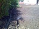 Foto Montaj aspersoare si reglaj duze de aspersie tip spray sau tip rotor pentru aspersoare de gradina