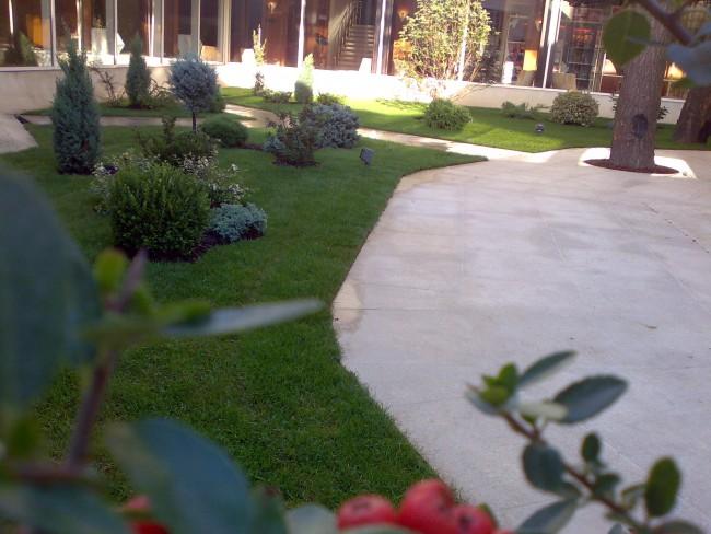Amenajari gradini mici pentru terasele restaurantelor, curtea interioara a hotelurilor si a altor spatii de dimensiuni mici destinate relaxarii. Gradini mici sau medii decorate cu plante ornamentale deosebite, rezistente la clima din Bucuresti sau lo