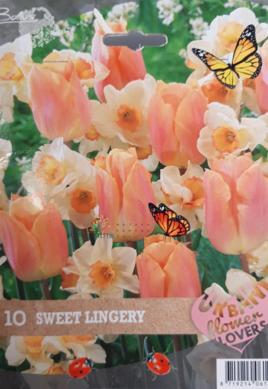 Urban flower-sweet lingerie