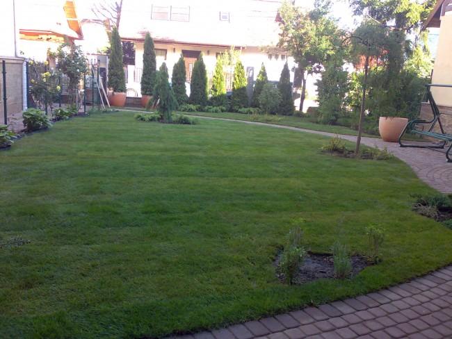 Amenajari gradini cu plante de umbra, conifere si gazon de umbra. Din amenajarea gradinii nu lipsesc sistemele de irigatii pentru udarea plantelor si gazonului, sistemele de drenaj pentru colectarea excesului de apa si sistemele de iluminare pentru p