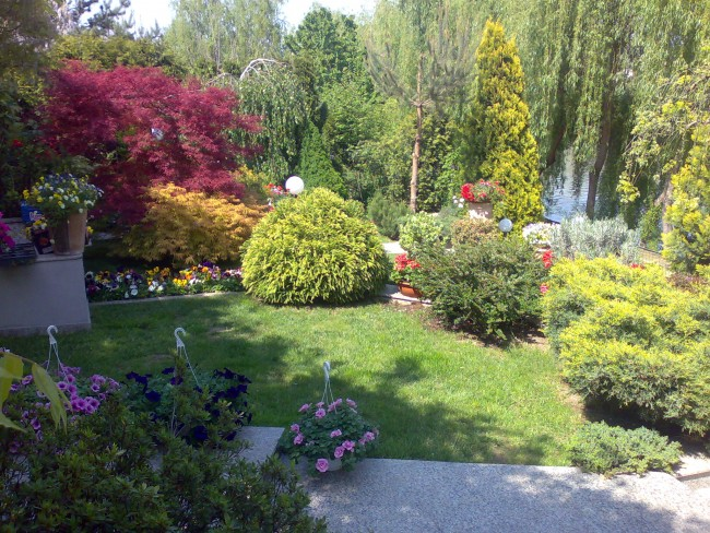 Constructii gradini: amenajari cu plante decorative ornamentale de gradina, montaj sisteme de irigatii, iluminare decorativa si drenaj pentru gradina, plantari trandafiri si flori, semanare sau montaj gazon