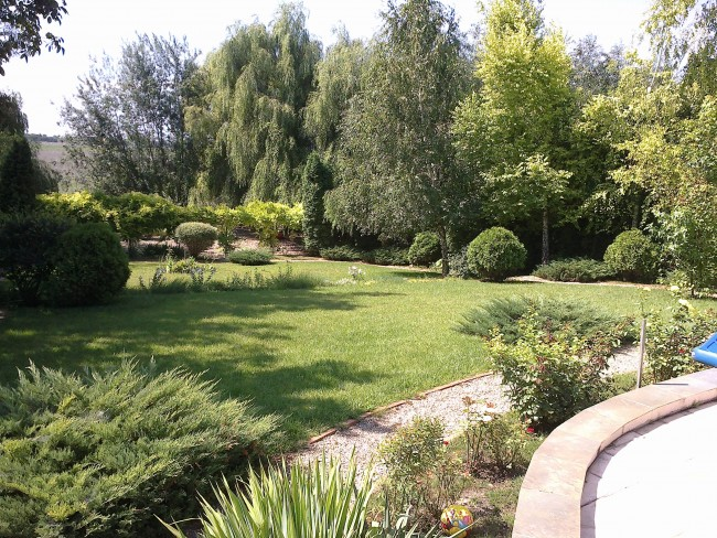 Amenajare gradini, terase si spatii cu plante ornamentale de gradina, arbori, arbusti decorativi, flori si gazon. Amenajari parcuri si gradini rezidentiale.