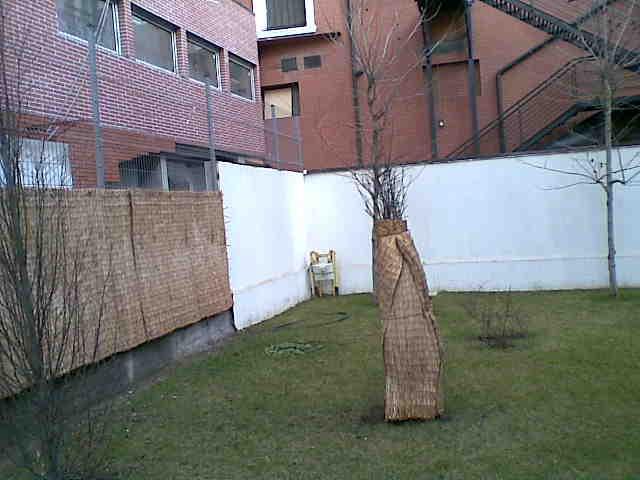 Pregatirea gradinilor pentru iarna