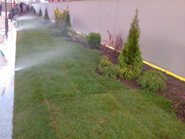 sisteme automatizate de irigatii cu aspersoare de tip spray, folosite la udarea spatiilor inguste