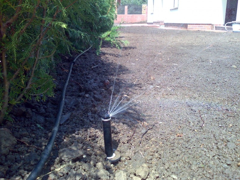 Montaj tuburi de picurare si tevi picuratoare la radacina gardurilor vii sau a grupurilor de plante de acelasi fel.