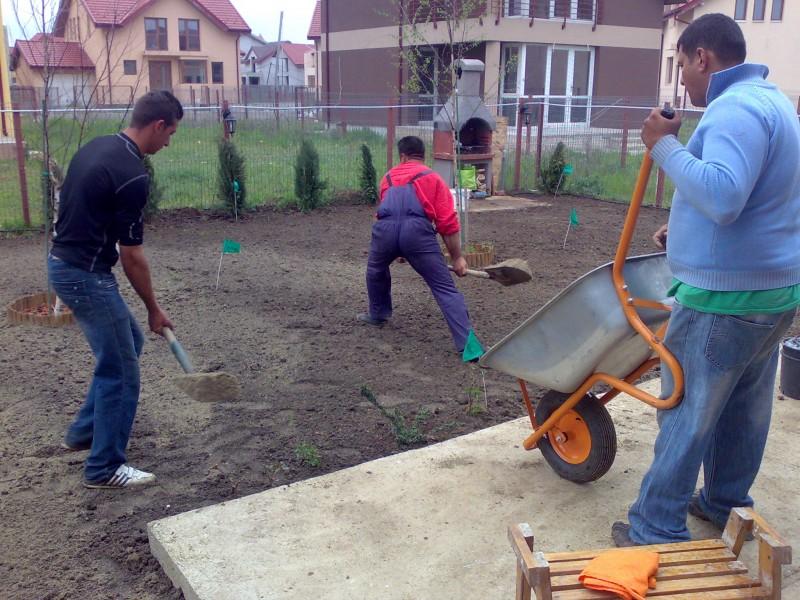 Manipulare manuale pamant, nisip, pietris pentru nivelarea suprafetelor de gradina.