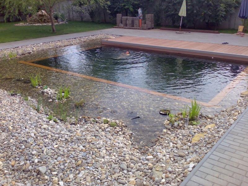 Iazuri, lacuri si helestee cu loc de inot, cu sau fara pesti. Iazurile, lacurile si helesteele cu loc de inot pot avea diferite adancimi (cuprinse intre 1 m si 3 m), in functie de utilitate. Filtrarea se realizeaza natural, fara chimicale, recirculan