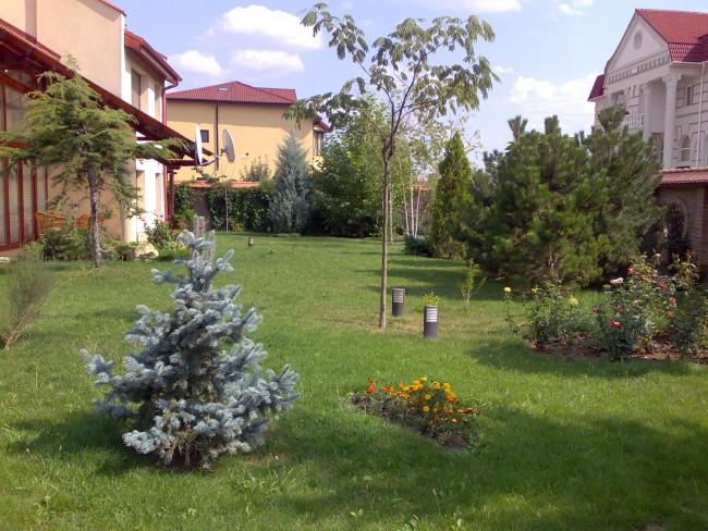 Amenajari gradini clasice: amenajarea unei gradini in stil clasic,prin imbinarea arborilor si arbustilor in grupuri, pe contur si plantarea catorva arbori solitari in interiorul spatiului gradinii