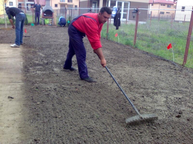 Incorporarea in sol a semintelor de gazon.