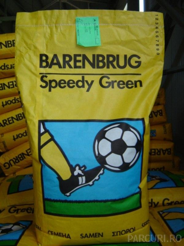 Seminte de gazon (amestec de seminte de iarba) pentru insamantare si refacere gazon, rezistent la calcare