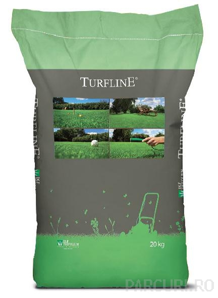 Seminte rizomatice de gazon de umbra. Amestec de seminte de iarba pentru insamantarea gazonului rezistent la umbra deasa si umiditate mare
