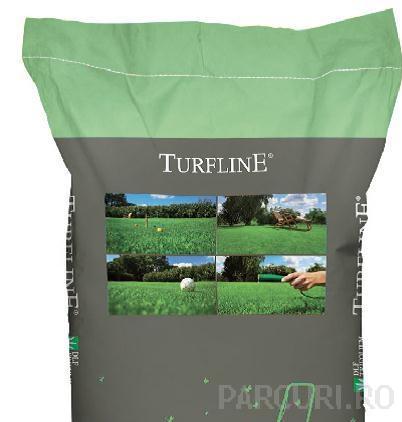 Seminte rizomatice de gazon de seceta. Amestec de seminte de iarba pentru insamantarea gazonului rezistent la soare, lipsa de apa si umiditate scazuta