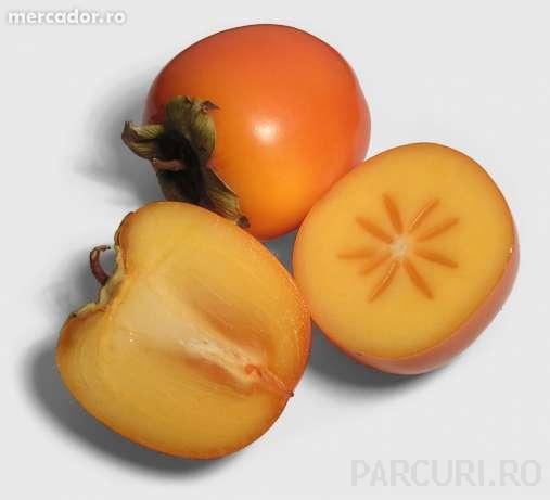 Pomi fructiferi exotici, Kaki (curmal japonez) (Diospyros virginiana).