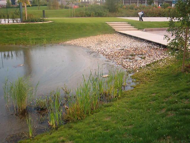 Lac artificial si cascada cu sisteme de filtrare si recirculare a apei