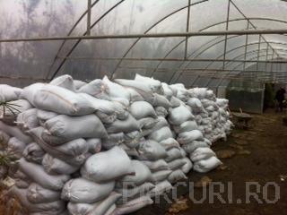 Pamant vegetal fertil de padure in saci de 50 de kilograme
