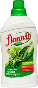 poza Ingrasamant Florovit pentru plante verzi, 500 ml
