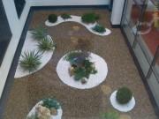 Galerie foto Amenajari terase si spatii interioare cu plante, flori si gazon, scoarta de pin, pietris decorativ si alte materiale