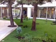 Galerie foto Amenajarea gradinii interioare a unui hotel din Bucuresti, spatiu verde destinat relaxarii si discutiilor.