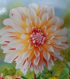 poza Bulbi flori de gradina Dalia `Caribbean Fantasy` (dalia) , 1 radacina / pachet