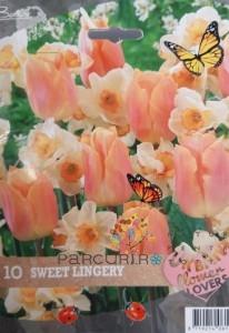 Poza Urban flower-sweet lingerie