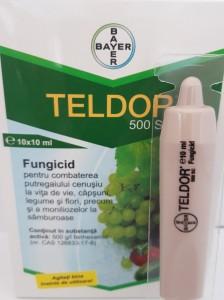poza Fungicid TELDOR 500 SC, 10 ml