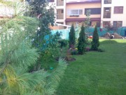 Galerie foto Amenajari parcuri si gradini private cu plante foioase si conifere de toate felurile: arbori, arbusti si flori ornamentale.