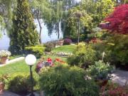 Galerie foto Amenajari gradini, parcuri, terase si spatii verzi. Lucrari peisagistice complete de amenajare a gradinilor.