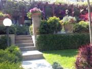 Galerie foto Amenajarea unei gradini mici dar pline de plante ornamentale colorate, cu inflorire in perioade diferite