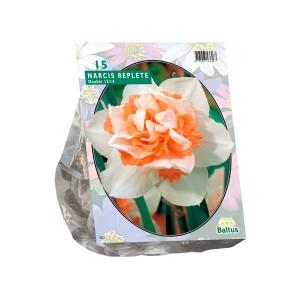 poza Bulbi de narcise, Replete, 15 buc/punga, floare batuta, alba cu interiorul portocaliu
