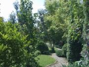 Galerie foto Amenajarea peisagistica a unei gradini medii cu plante ornamentale de gradina, alei, elemente decorative si gazon.