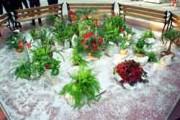 Galerie foto Amenajari acoperisuri verzi, terase si spatii interioare cu plante, flori si gazon, scoarta de pin, pietris decorativ si alte materiale