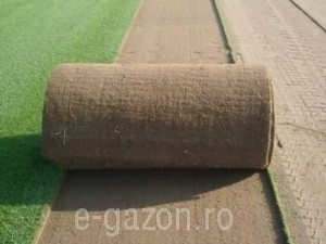 poza Gazon import Garden Turf Big Rolls, role mari (18mp/rola)