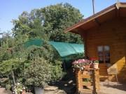 Galerie foto Magazin de plante de gradina online: arbori, arbusti, gazon, instalatii de irigat gradina si servicii de amenajari si intretinere gradini.