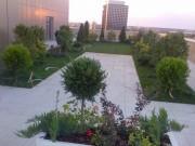 Sfaturi utile de amenajare si intretinere a gradinilor, gazonului si sistemelor de irigatii pentru plante de gradina si gazon.