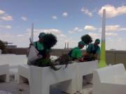 Galerie foto Servicii de ingrijire gazon si intretinere plante ornamentale de gradina.