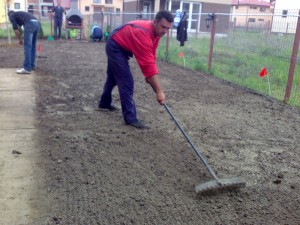 Poza Incorporarea in sol a semintelor de gazon.