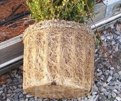 poza Plantari arbori, arbusti si flori de gradina in containere sau cu balot de pamant de 7-10 litri