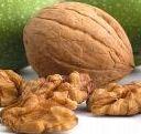 poza Pomi fructiferi Nuci la ghiveci,Juglans regia, ghiveci 7.5 l,h=150 cm