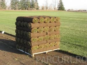 Poza  Covor de gazon rulat (rulou de gazon) pentru gazonare parcuri si gradini