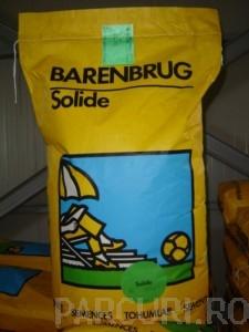 poza Seminte Gazon Barenbrug Solide 15kg