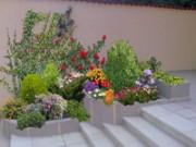Galerie foto Proiectarea - amenajarea gradinilor si parcurilor cu sisteme de irigatii, drenuri, cablaje electrice de gradina si planuri de plantare