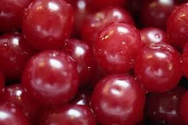 poza Pomi fructiferi Visini soiul `Mocanesti`. Puieti fructiferi altoiti, cu radacina ambalata.