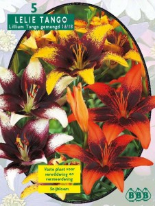 poza Bulbi plante perene crini  'Lilium Tango'  (crin asiatic), mixt, 5 bulbi crin/pachet