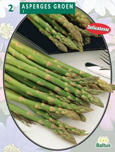 poza Sparanghel (asparagus), 2 radacini/pachet