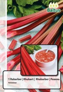 poza Rubarba sau revent (Rheum rhabarbarum) pentru plantare, 1 radacina/ pachet